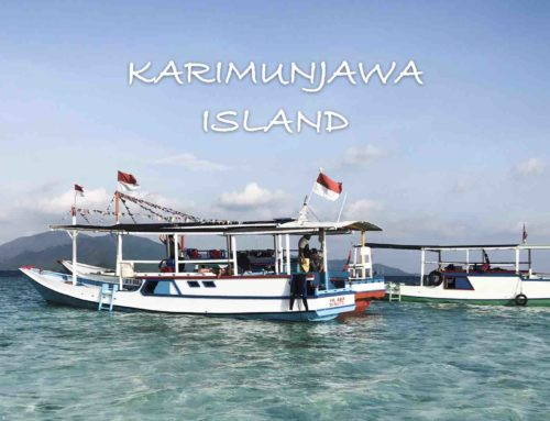 5 Things to Do in Karimunjawa